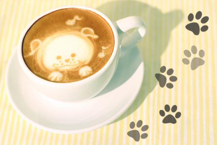 Dog's face cappuccino